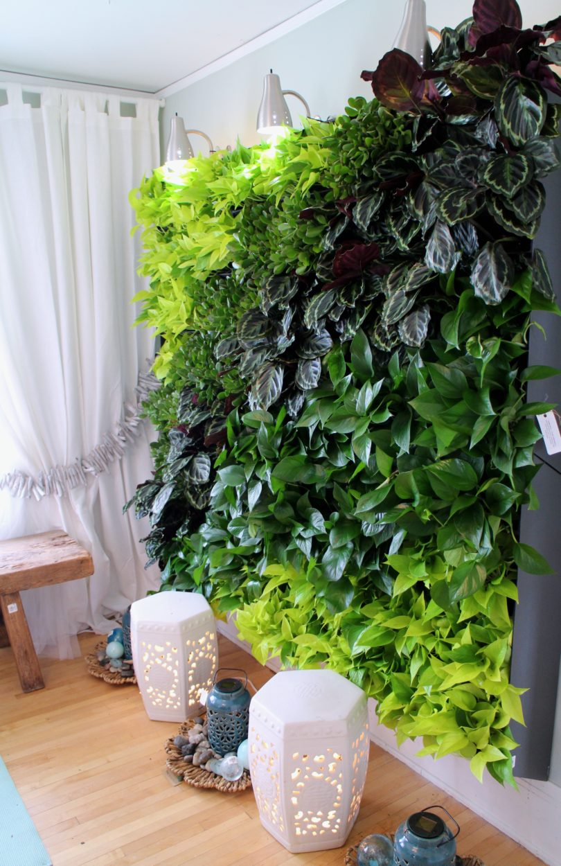 Living Wall Bachman's Spring Ideas House 2015
